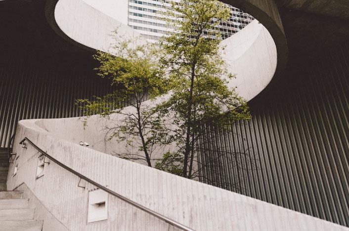 Escalera de edificio con árbol en medio