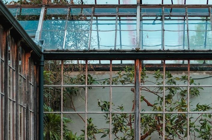 Invernadero de madera y cristal