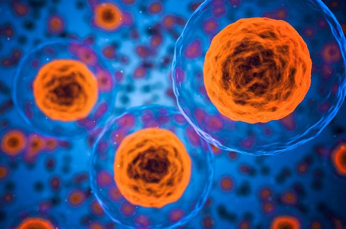 Reacción celular a las partículas