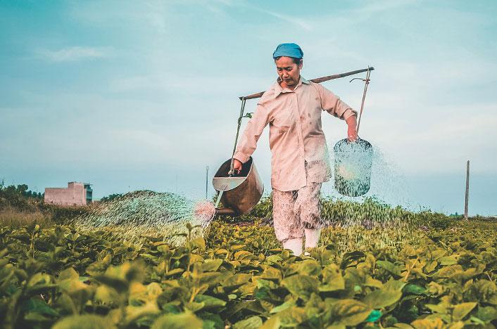 Mujer regando plantas con agua reutilizada