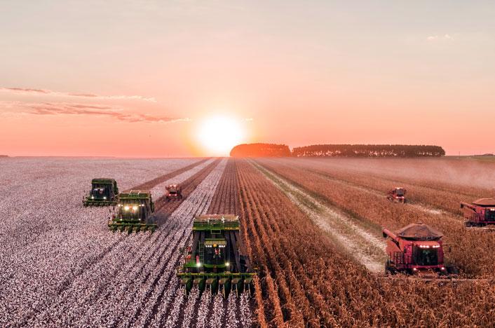 Tractores arando el campo