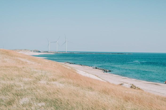 Molinos de viento cerca de la playa