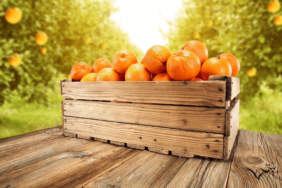 Caja-madera-naranjas