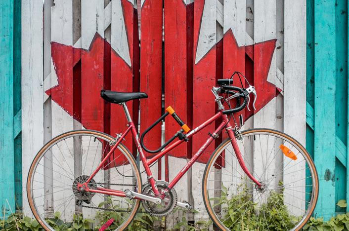 Candado bicicleta antirobo