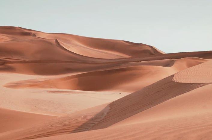 Ecosistema de desierto