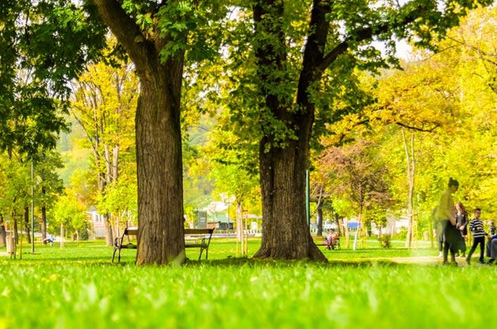 Zonas verdes en la ciudad