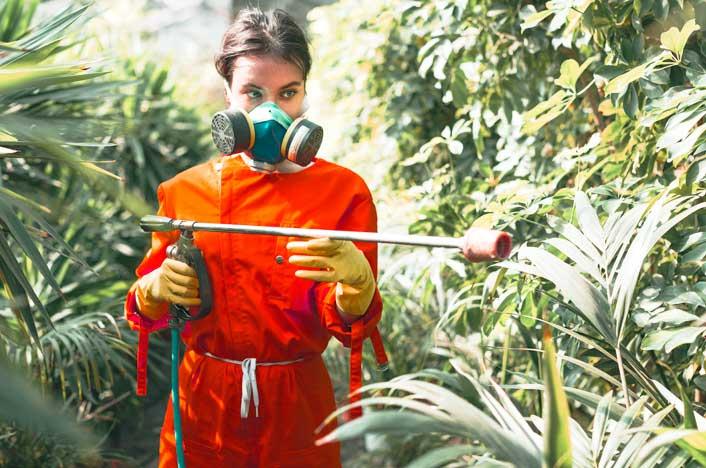 Mujer aplicando pesticidas sobre plantas