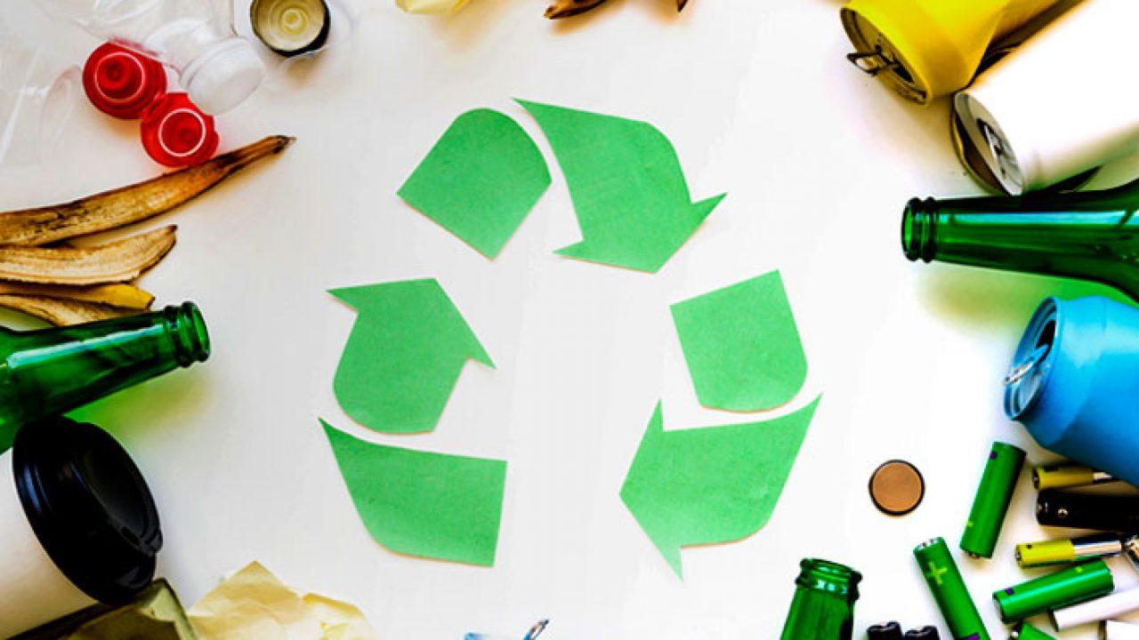 ♻️ ¿Eres nuevo en el reciclaje? ¡Descubre esta guía de cómo ...