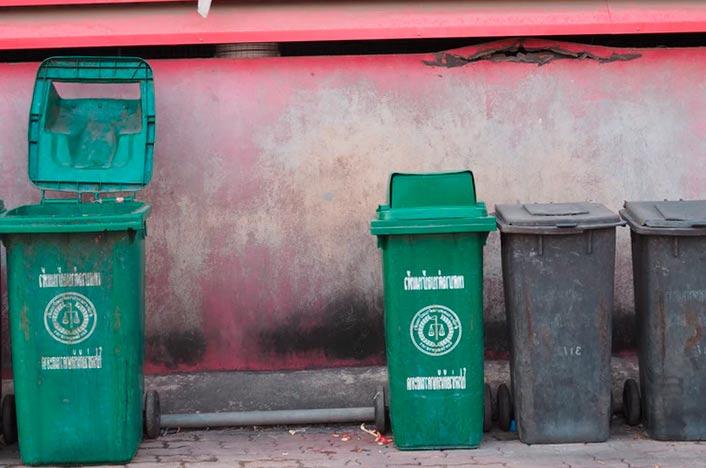 Reciclar basura orgánica