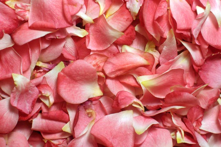 Exfoliante para la cara con pétalos de rosa