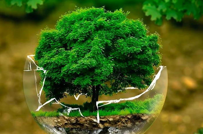 Proyectos de gestión ambiental