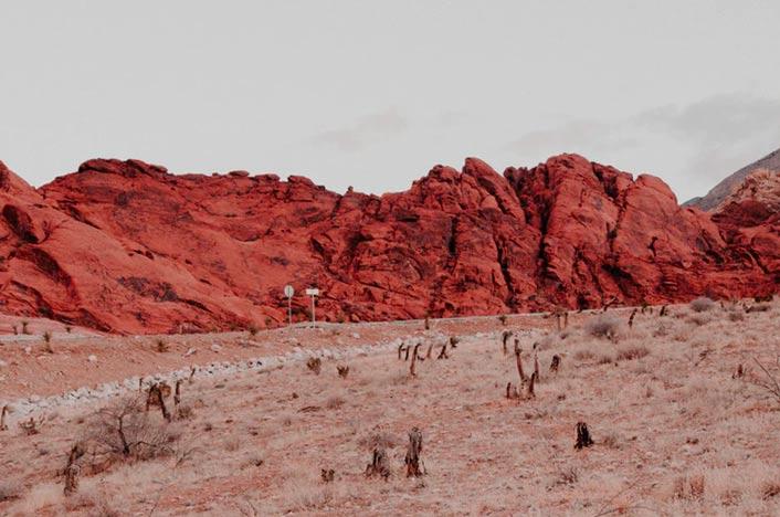 Desertificación, uno de los problemas de los incendios forestales