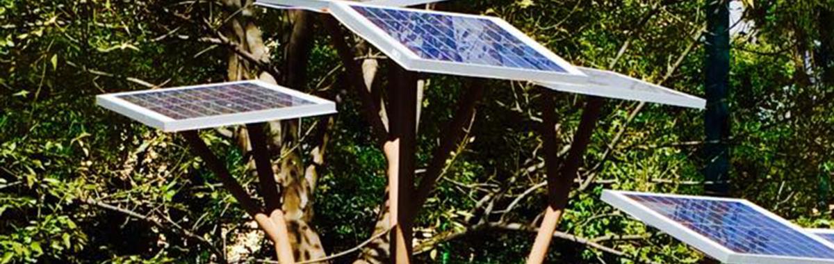 Árbol solar