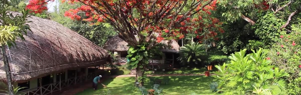 Ruta ecológica por India: El hotel 100% sostenible