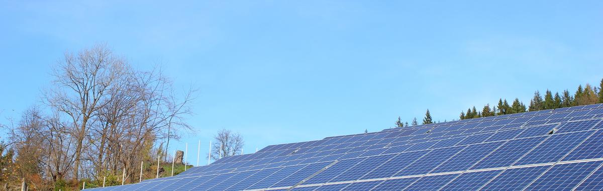 Energía renovable Oaxaca