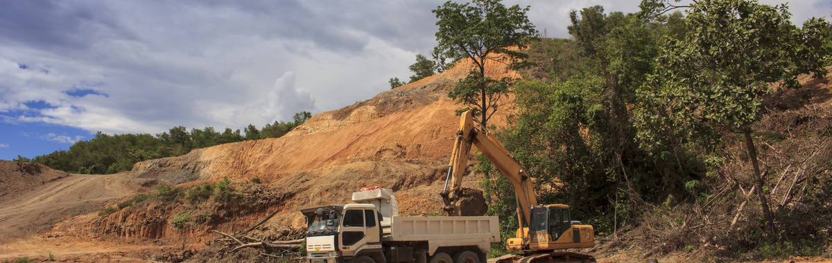 Objetivo 2020: reducir la deforestación en Colombia