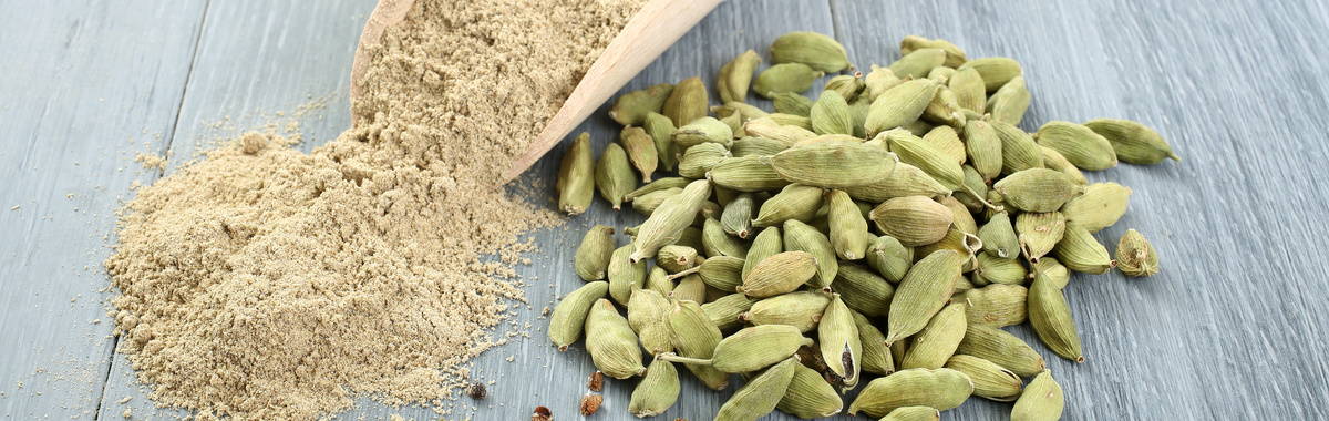 Ruta ecológica por India: el cultivo del cardamomo