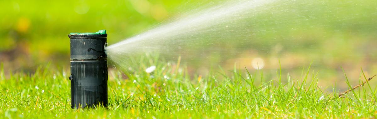 Seis formas originales de reutilizar el agua en casa