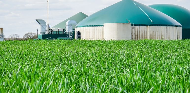 Las potencialidades del biogás en Argentina
