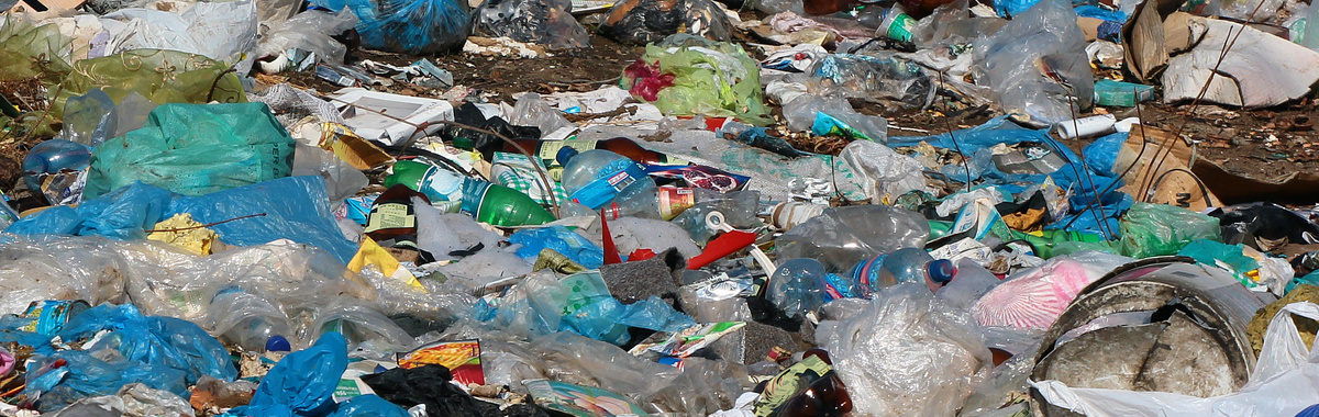 Bye Bye Plastic Bags: eliminar las bolsas de plástico en Bali