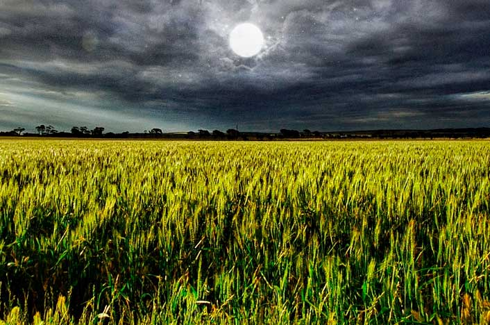 relación de los astros y cultivos