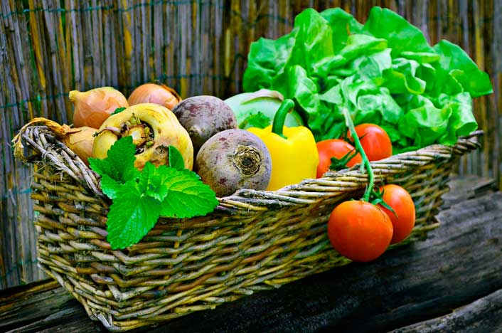cultivos biodinámicos