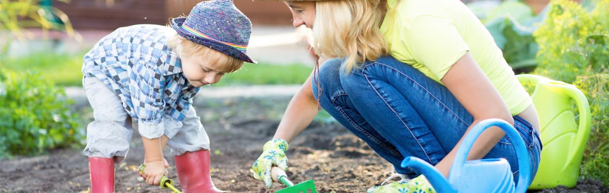 Educación ambiental con un huerto en casa