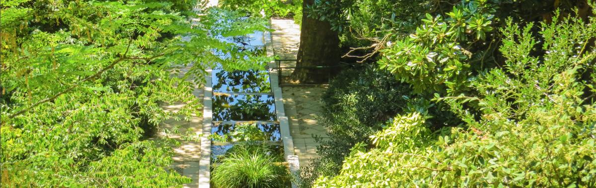 Realidad virtual y renovables en el Jardín Botánico de Bogotá