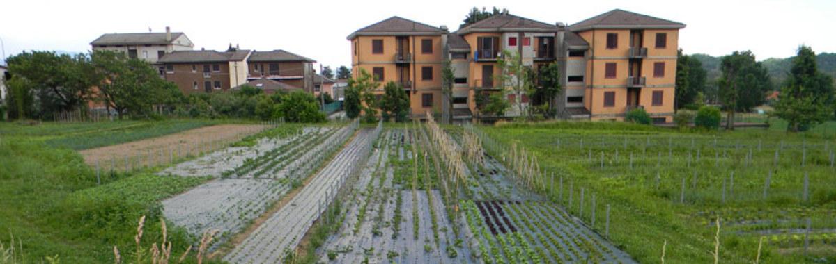 Productos Km 0: mercados agrícolas y de proximidad