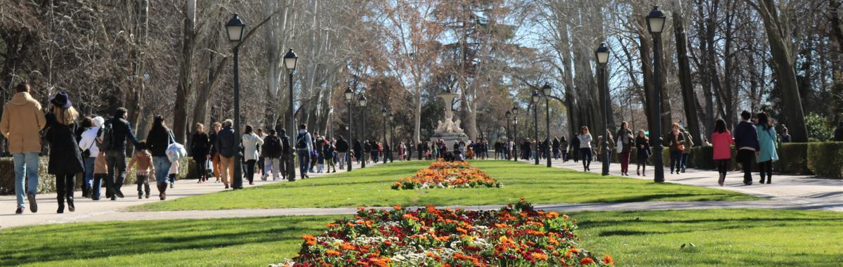 La relevancia de las zonas verdes en las ciudades