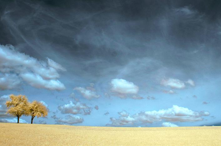Desertificación del Planeta