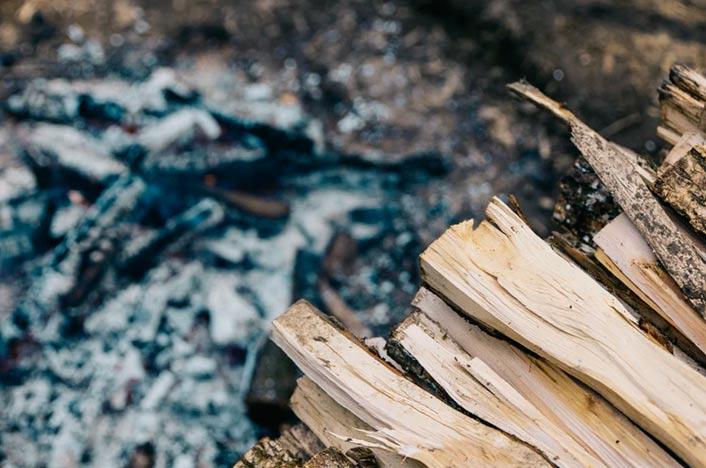 Cenizas de madera para hacer fertilizantes caseros para árboles frutales