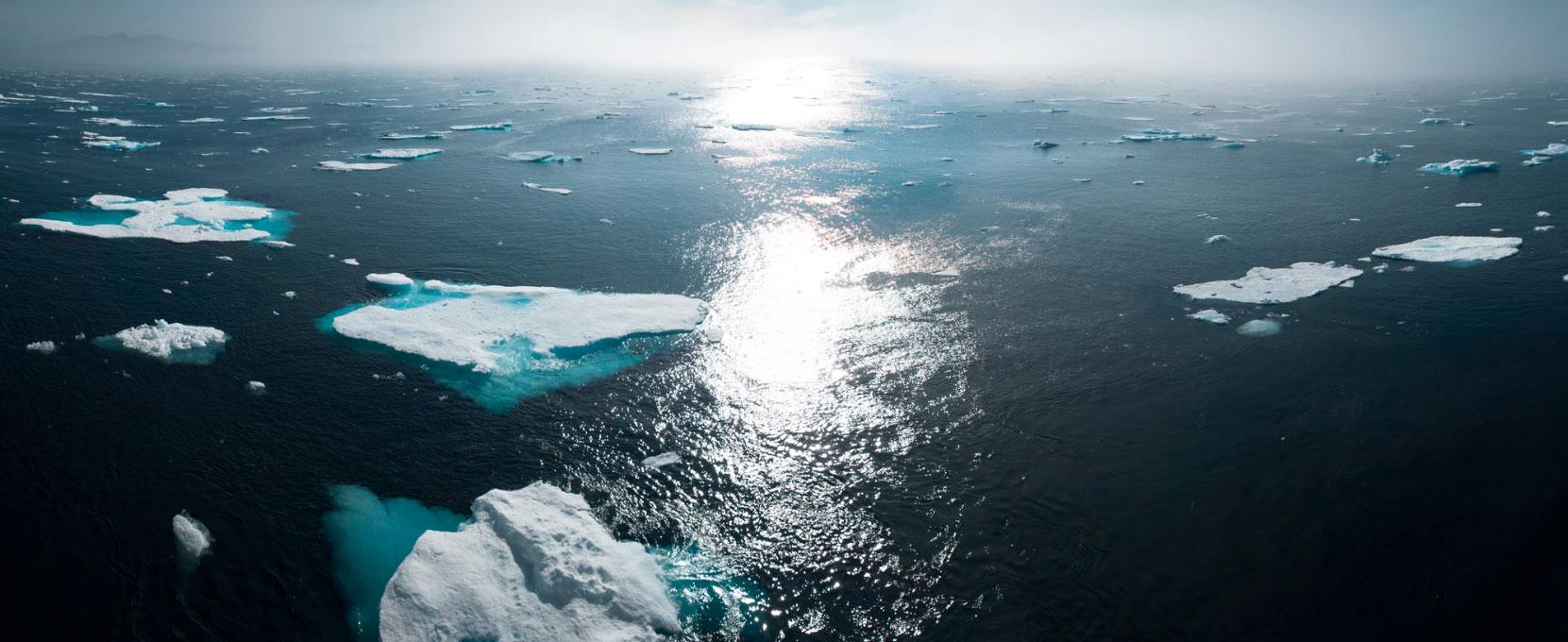 Cómo Prevenir Y Evitar El Calentamiento Global Twenergy