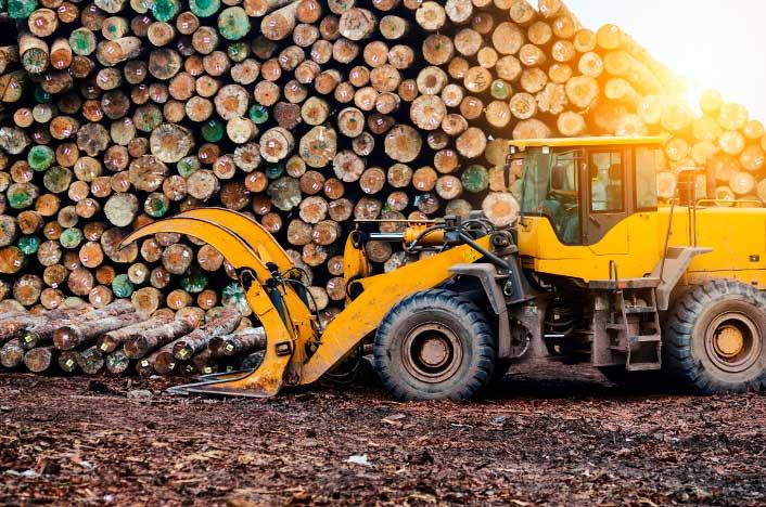 Máquina de silvicultura