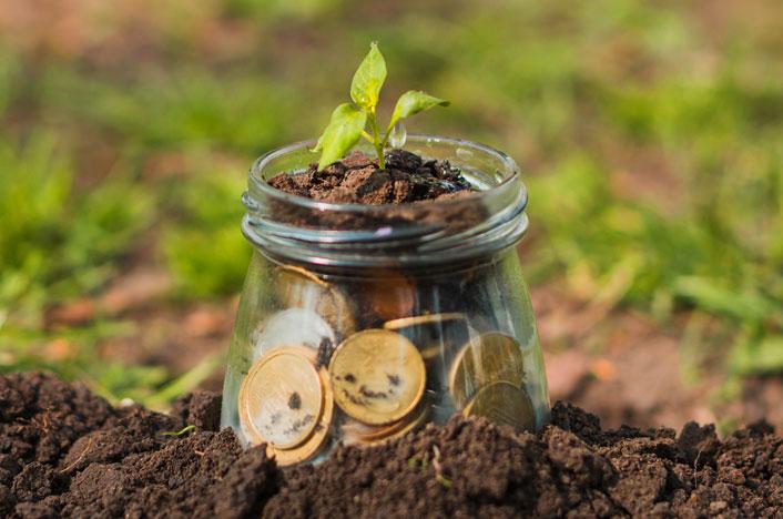 donación ambiental