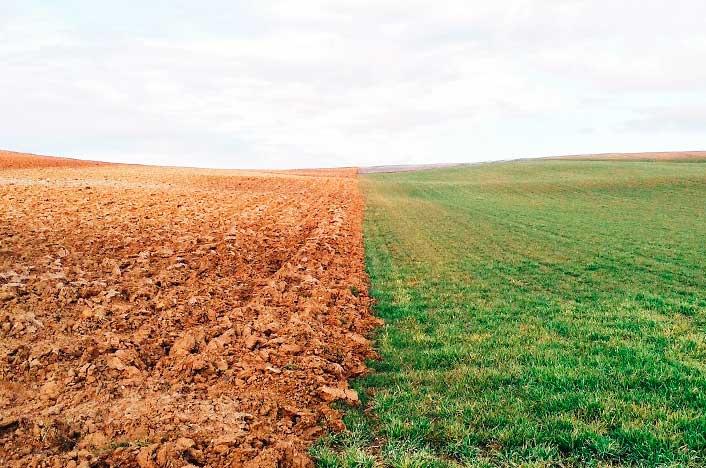 cuáles son los tipos de suelos