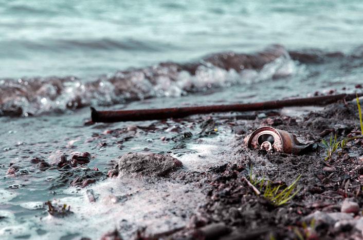 contaminación biológica del agua