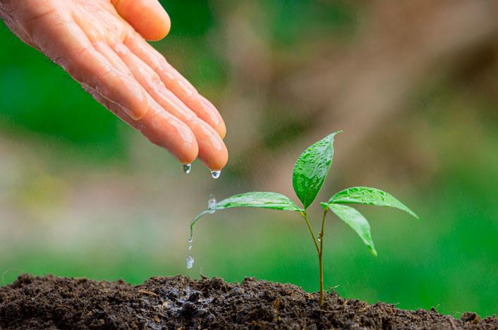 características de la economía sostenible