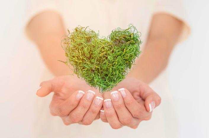 corazón verde en manos