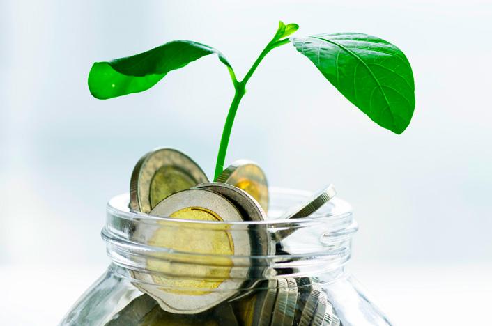 frasco de vidrio con dinero y planta